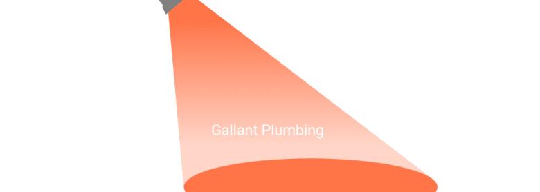 In the Spotlight: Gallant Plumbing